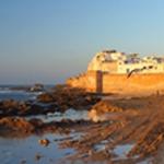 Jour 7 : de Cap Sim à Essaouira, retour à Agadir